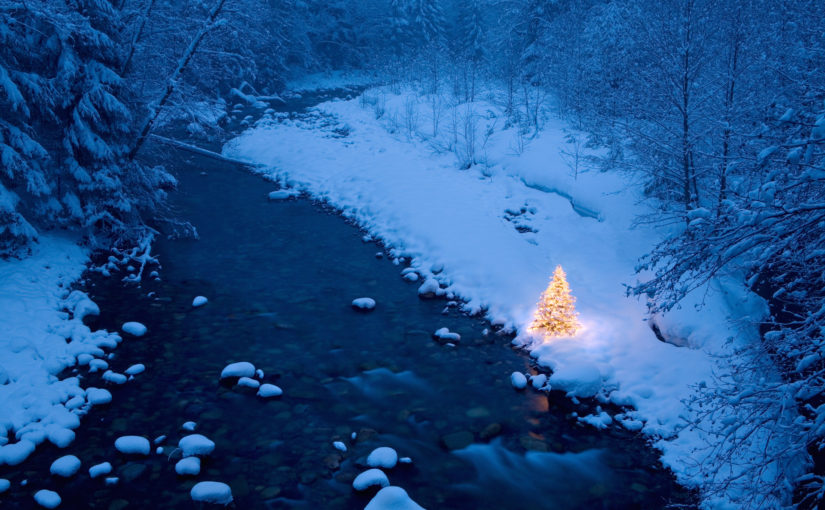 Winter Illumination: Let's Keep Christmas Lights Until Easter